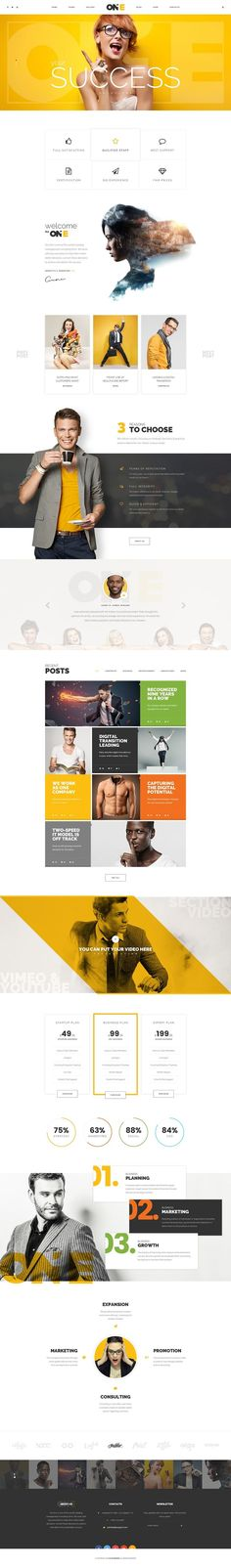 Best of WordPress 2016 More