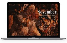 NOVEMBER LARGE DESKTOP WALLPAPER - FALL LEAVES - FREE DOWNLOADABLE DESKTOP WALLPAPERS FOR NOVEMBER 2019. Foliage goals, pumpkins everywhere, everybody just being super thankful and grateful and the like. November Wallpaper, Fall Wallpaper, Hello November, November 2019, Grateful, Thankful, Macbook Wallpaper, Fall Leaves, Desktop Wallpapers