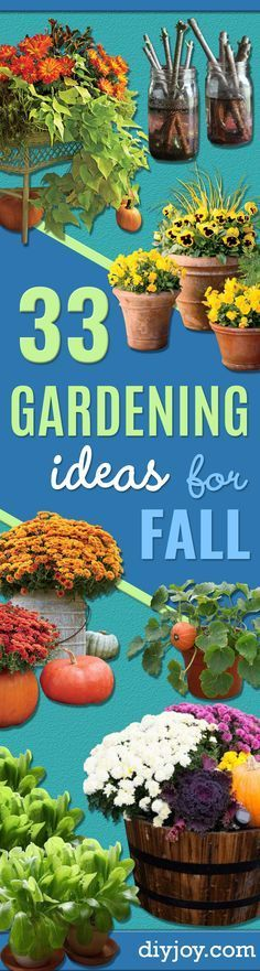 Best Gardening Ideas for Fall - Cool DIY Garden Ideas for Planting Autumn Varieties of Flowers and Vegetables - Pumpkins, Container Gardens, Planting Tips, Herbs and Easy Ideas for Beginners http://diyjoy.com/gardening-ideas-fall