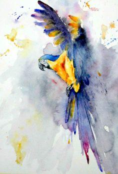 "6275 Nr ""Ara Ararauna"" Watercolor 65x50cm painted with Escoda last nr18 + nr14Escoda Pearl synthetic nr.10, Escoda Barcelona flat, Escoda Prado nr10 & Escoda optimum synthetic nr. 2 on Hahnemuhle Andalucia 500 gram © Gerard Hendriks 2014"
