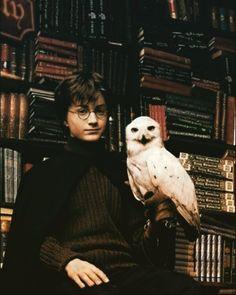 Harry Potter, HP, Harry, Potter