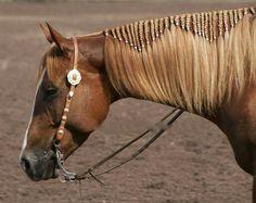 Horse Mane Braids, Horse Hair Braiding, All The Pretty Horses, Beautiful Horses, Animals Beautiful, Beautiful Braids, Pretty Braids, Horse Costumes, Horse Grooming