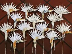 Paper Strelitzia project custom made to order for local artist fro  her drawings with Lesley Magwood Fraser