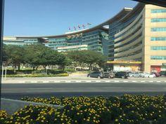 Marina Bay Sands, Dolores Park, Building, Travel, Viajes, Buildings, Destinations, Traveling, Trips