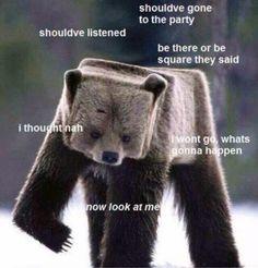 square bear!