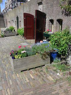 Werfkelder aan de Oude-Gracht (rob-foto).