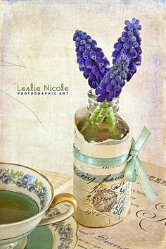 Vintage Muscari | Flickr - Photo Sharing!-leslie nicole of frenck kiss collections (textures)