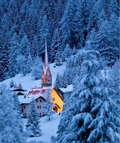 Church and the woods how beautiful