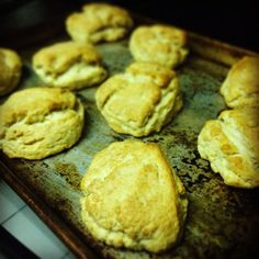 Old Fashioned Scratch Biscuits  Golden Isles Cooks  http://goldenislescooks.blogspot.com  #recipe #food #lessons #cooking #foodphotography #foodie #recipeideas #recipesandmore #recipesandfood #cookinglesson #cookingtips #cookbook #cookware #guide