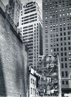 "-Online Browsing-: Berenice Abbott. ""I took to photography like a duck to water. I never wanted to do anything else."""