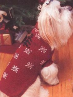 This easy knit dog sweater pattern will assure that your whole family is in the Christmas spirit.