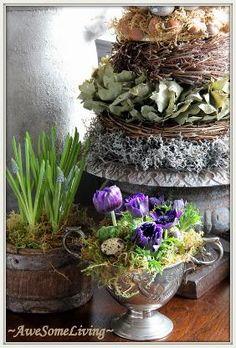anemoontjes en voorjaarskriebels