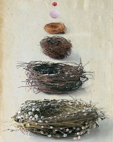 The pyramidal display borrows from detailed 19th-century engravings of  nests and eggs, such as those by Reverend F.O. Morris. Like Morris's  illustrations, these crafts projects adopt a naturalistic style.