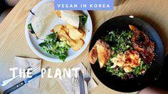 THE BEST VEGAN PLACE IN SEOUL, THE PLANT RESTAURANT   VEGAN IN KOREA pt.2 