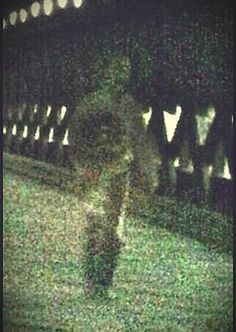 15 Eerie True Life Ghost Photographs to Give you the Shivers. OK, I can rationally explain some of them, but not all of them. Assuming that the descriptions of how they were taken are truthful . Scary Places, Haunted Places, Haunted Castles, Haunted Hotel, Creepy Things, Real Ghost Photos, Ghost Pics, Gettysburg Ghosts, Best Ghost Stories
