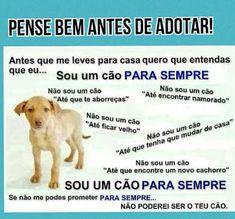 Fica Cãomigo: Termo de adoção - IMPRIMA - muito importante!