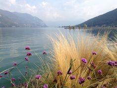 Paratico. Lago d'Iseo.