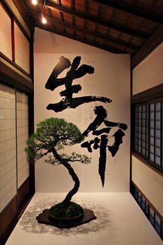 """Seimei"" = life, existence"