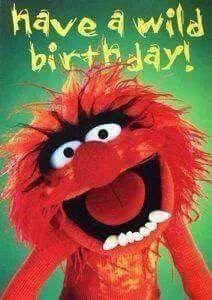 Animal Happy Birthday - Happy Birthday Funny - Funny Birthday meme - - Animal Happy Birthday The post Animal Happy Birthday appeared first on Gag Dad. Funny Happy Birthday Images, Happy Birthday For Him, Happy Birthday Quotes, Funny Birthday, Birthday Memes For Men, Birthday Pins, 21 Birthday, Animal Birthday, Birthday Ideas
