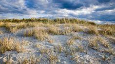 wingaersheek beach - Bing Images