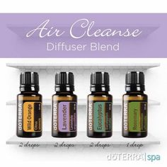 This yummy blend of Wild Orange, Lavender, Eucalyptus, and Rosemary will help cleanse your air at home, in the office, or, if you have a car diffuser, in your car! Try this one out today!