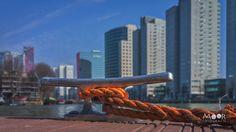 Woordloze Woensdag Stadswandeling Rotterdam Stadsgezicht