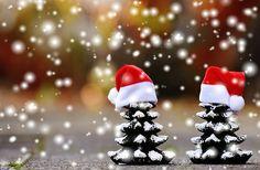 Vánoce, Jedle, Sníh, Stromy