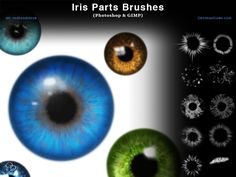 Iris Parts (Eyes) Photoshop and GIMP Brushes by redheadstock.deviantart.com on @DeviantArt