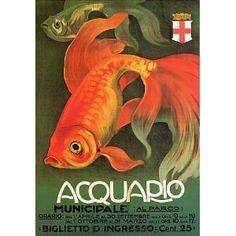 Aquarium, Italy