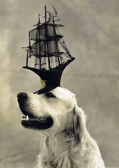 Stephen Jones´ hat by Bruce Weber.