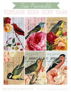 FREE VINTAGE BIRD GIFT TAGS