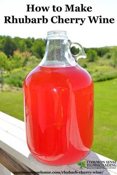 Rhubarb Cherry Wine – A Fun Twist on Rhubarb Wine Rhubarb cherry wine is an easy country wine that combines two abundant local fruits – rhubarb and tart cherries – into a bright and fruity homemade wine. Homemade Wine Recipes, Homemade Alcohol, Homemade Liquor, Wine Drinks, Alcoholic Drinks, Bourbon Drinks, Rhubarb Wine, Rhubarb Rhubarb, Wine Yeast