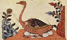 From The Book of Animals of al-Jahiz, Syria, fourteenth century; there was no word for 'species' in Arabic; a translated version of Darwin's magnum opus  first appeared in Arabic in 1918