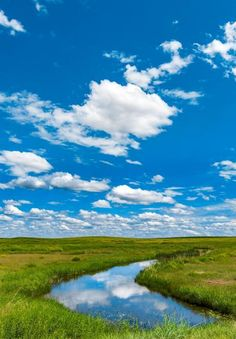 Moving to South Dakota   Travel South Dakota South Dakota Vacation, South Dakota Travel, Best Places To Retire, Places To See, Crazy Horse Memorial, Custer State Park, Beautiful Places To Live, Badlands National Park, Roadside Attractions