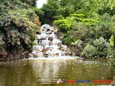 Très belle villa style provençal de 164m2 sur parc arboré de 5000m2. 12km de Bordeaux et 10mn de l'autoroute Bordeaux Paris avec piscine sécurisée, grand bassin et cascade. Sans vis à vis. Plein bourg de Sainte Eulalie. Environnement calme http://www.partenaire-europeen.fr/Annonces-Immobilieres/France/Aquitaine/Gironde/Vente-Maison-Villa-F7-SAINTE-EULALIE-1011078 #maison #jardin #cascade