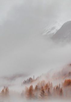 A beautiful fall fog. A beautiful fall fog. A beautiful fall fog. Mother Earth, Mother Nature, Landscape Photography, Nature Photography, Photography Ideas, Dreamy Photography, All Nature, Foto Art, Belle Photo