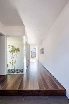 modern Corridor, hallway & stairs by 株式会社細川建築デザイン