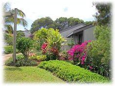 From VRBO- $85 per night Kauaii