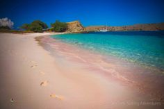 Komodo National Park is located between the islands of Sumbawa and Flores in Indonesia and consists of Komodo, Rinca, Padar and other smaller islands. Komodo National Park, National Parks, Sailing Adventures, Small Island, Beach, Water, Outdoor, Flowers, Gripe Water
