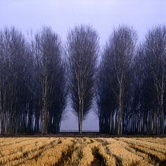 Tincino Valley, Italy, photo, Charlie Waite