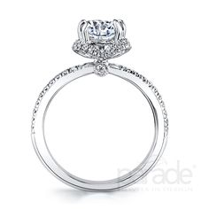 A brilliant center diamond sparkles within an artistic diamond halo, sitting atop a gleaming band of 18K gold.