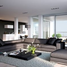 Modern apartment living room design family home idea on living room furniture contemporary design superb apartment of within inspiration ideas for Living Room Grey, Living Room Carpet, Living Room Modern, Home Living Room, Apartment Living, Living Room Designs, Living Room Decor, Kitchen Living, Small Living