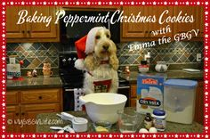 Christmas Baking - Peppermint Cookies