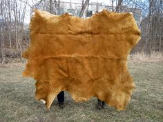 Non-Native Smoked Moosehide: Gallery Item Smoke Smell, Western Decor, Fall Harvest, Moose, Nativity, Cabin, Rustic, Blanket, Gallery