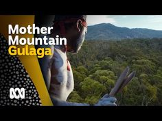 Mount Guluga the sacred Mother and Gurung-gubba the greedy pelican Aboriginal Language, People Online, Image Categories, Abc News, National Museum, East Coast, The Fosters, Finance, Knowledge