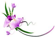 floral - Pesquisa Google