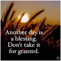 Another day is a blessing. Don't take it for granted. thedailyquotes.com