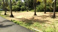 11 Cent Residential Land Thalikulam, Thrissur