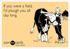 If+you+were+a+field,+I'd+plough+you+all+day+long.