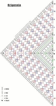 Erigeneia_haekelschrift-1.gif 800×1,512 pixeles